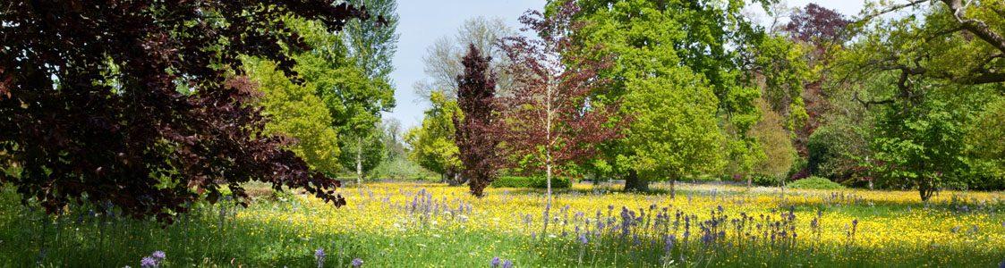 HRH's Highgrove Gardens, Gloucester