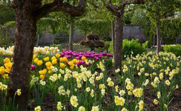 HRH's Highgrove Gardens, Gloucester – Date to be confirmed