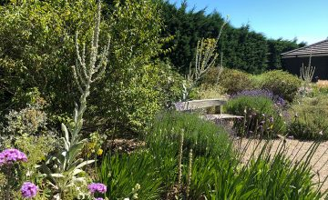 Beth Chatto's Garden, RHS Garden Hyde Hall and Hatfield House