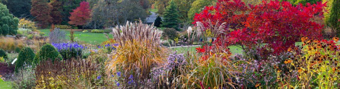 Gardens of Yorkshire